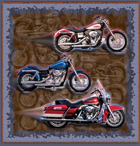 motos gp y enduro.... Moto_2005